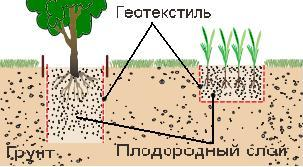 геотекстиль в растениеводстве